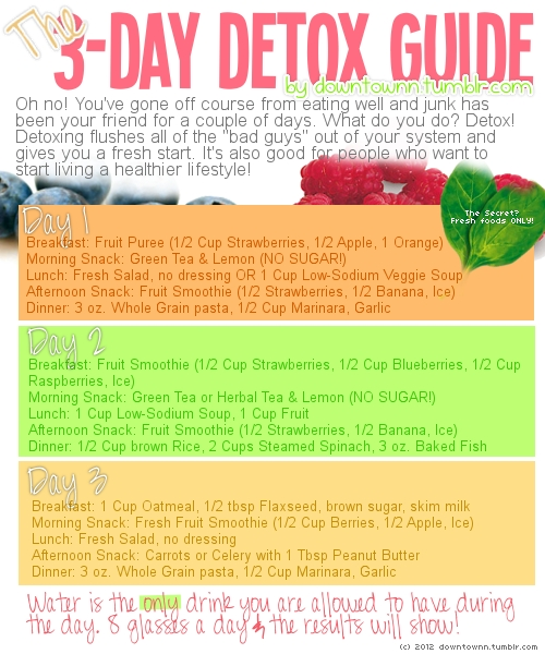 3 Day Detox Guide Say Yes To Happy
