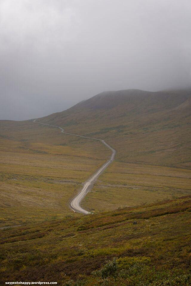 road11
