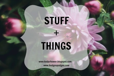 flowers-house-plant-flower-Stuff+%26+Things